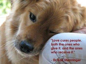 LOVE HEALS EVERYTHING
